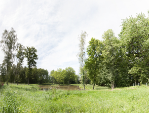 panorama-etang